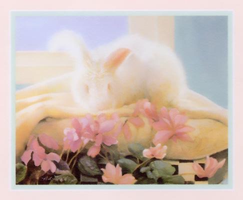 Nancy Noel. Rabbit