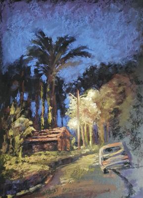 Elena Genkin. Night walks near the house