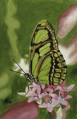 Artashes Badalyan. Butterflies-2 - x-hardboard-m - 30x20