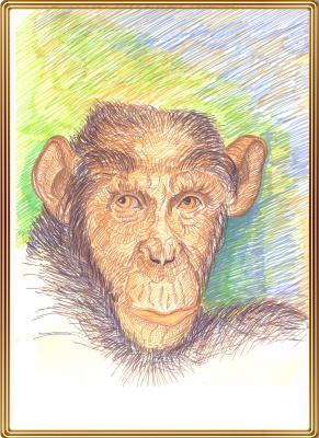 Vladimir Pavlovich Parkin. Портрет обезьянки шимпанзе по имени Джана