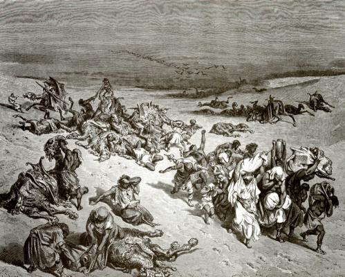 Paul Gustave Dore. Bible illustration: plague