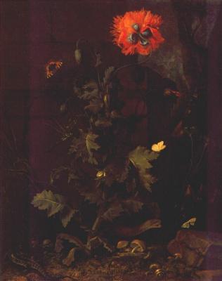 Ван Шриек. Натюрморт с маковыми насекомыми и рептилиями