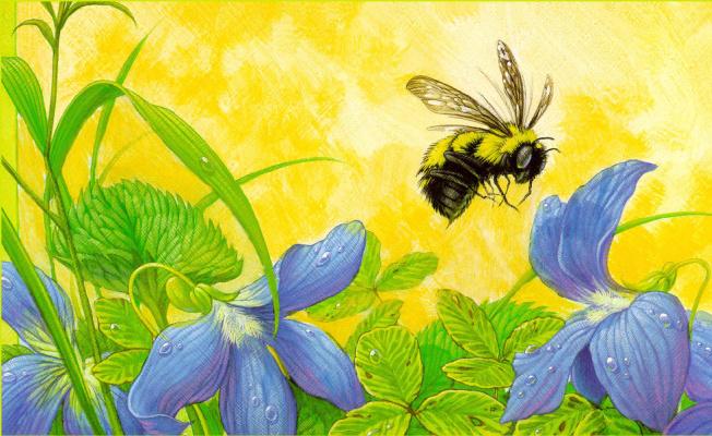 Кристофер Каньон. Пчела