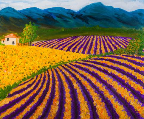 Arina Yuryevna Yastrebova. Provence lavender fields