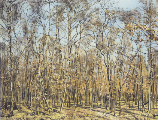 Ferdinand Hodler. Beech forest