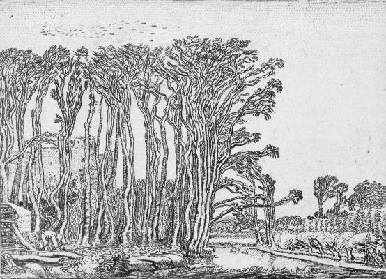 Виллем Бейтевех. Мертвое дерево