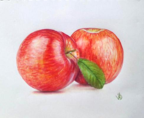 Sophie Wasilewska. Яблука