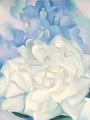 Джорджия О'Киф. Белая роза и живокость. № 2
