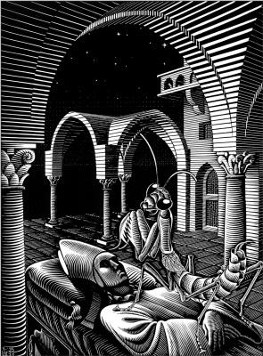 Maurits Cornelis Escher. Sleep