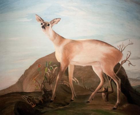 Tivadar Kostka Chontvari. Fallow deer