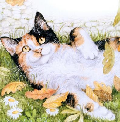 Дебби Кук. Кот лежит на траве
