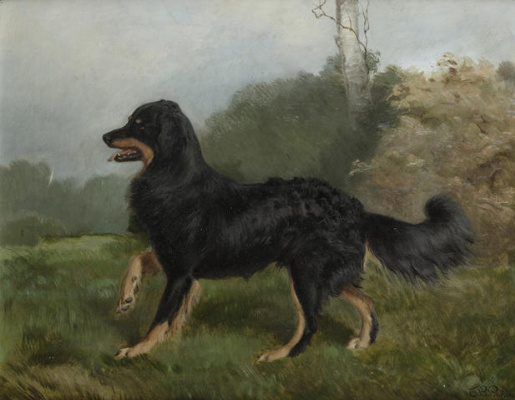 Чарльз Бертон Барбер. Sharp, brother of Fern- one Queen Victoria`s dogs