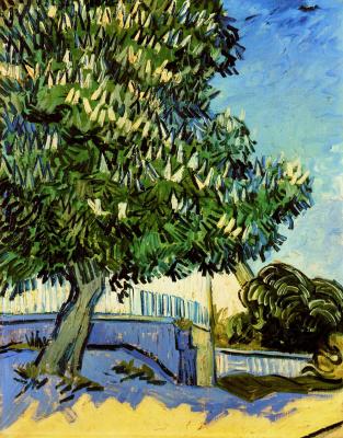 Vincent van Gogh. Flowering chestnuts