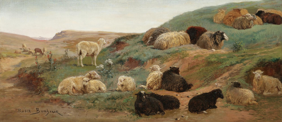 Rose Bonhur. Sheep in a mountainous landscape