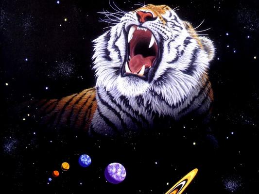 Шим Шиммель. Тигр