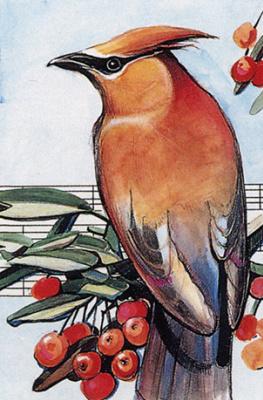 Малкольм Фарли. Птица