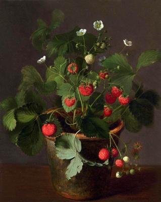 Otto Didric Ottesen. Blooming strawberry