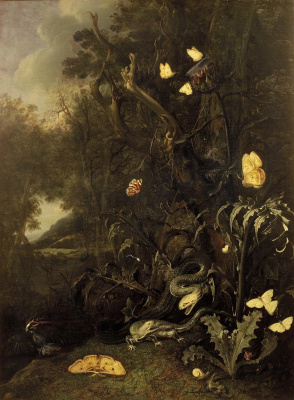Otto Marceus van Scriec. Plants and insects