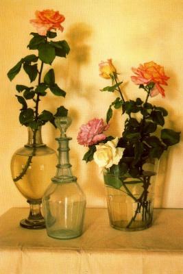 Клаудио Браво. Розы