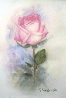 Sophie Wasilewska. Pink rose