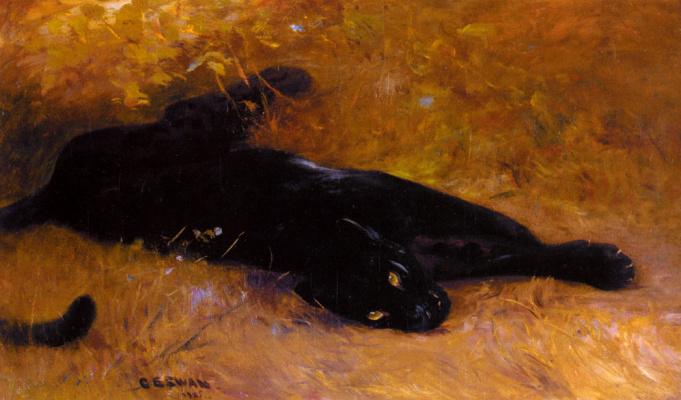 Катберт Эдмунд Свон. Черная пантера