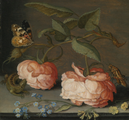 Baltazar van der Ast. Rose, butterfly and lizard on the stone table