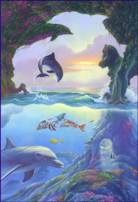 Джим Уоррен. Дельфины