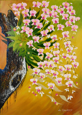 Leda Vysotsky. Orchids