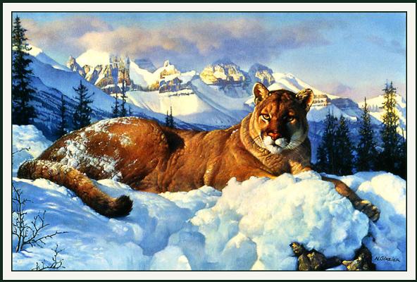 Нэнси Глейзер. Снежный король