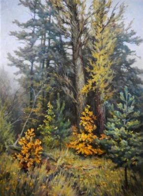 Александр Владимирович Кусенко. Mixed forest. Oaks