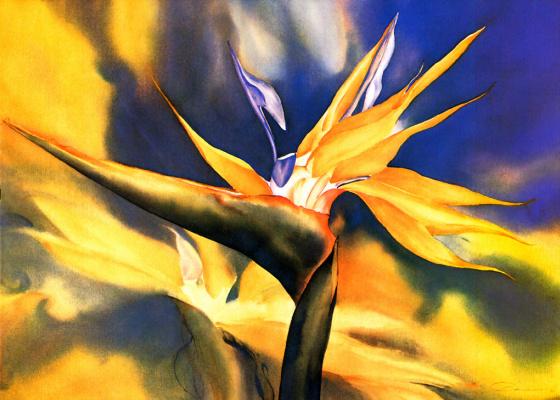 Жанна Бонин. Мечта радуги