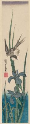 "Utagawa Hiroshige. Swallow and iris. Series ""Birds and flowers"""