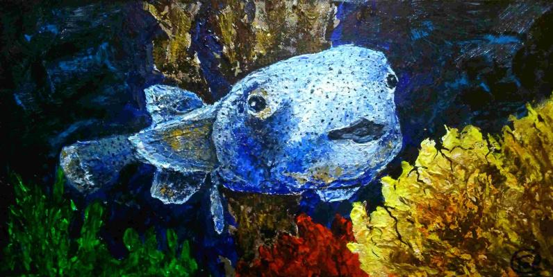 Виктория Попович. Рыба в море