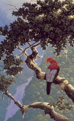 Ричард Слоан. Природа Урубамбы