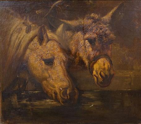 Роза Бонёр. Лошадь и осел, пьющие воду