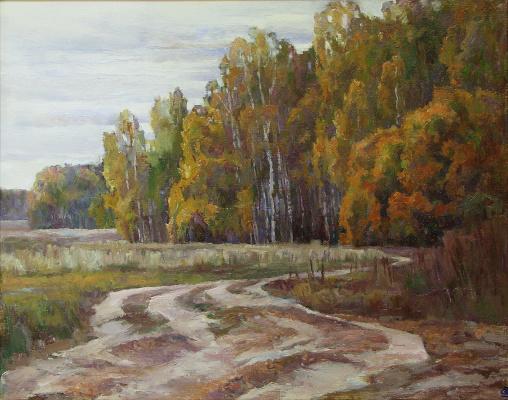 Oleg Borisovich Zakharov. The road to the international airport.