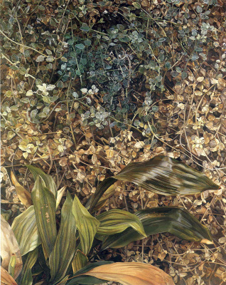 Lucien Freud. Two plants