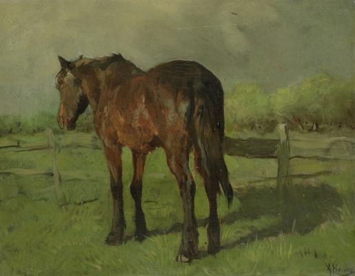 Антон Мауве. Лошадь