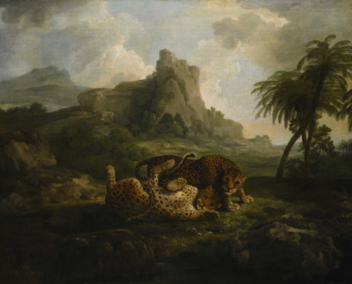 George Stubbs. Game leopards