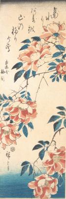 Утагава Хиросигэ. Дикие розы над рекой
