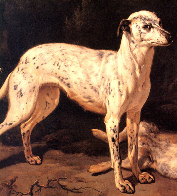 Ян Баптист Веникс. Собака стоит возле мертвого зайца