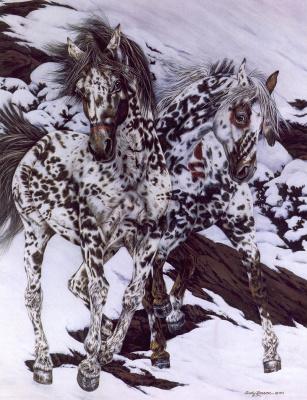 Джуди Ларсон. Пони