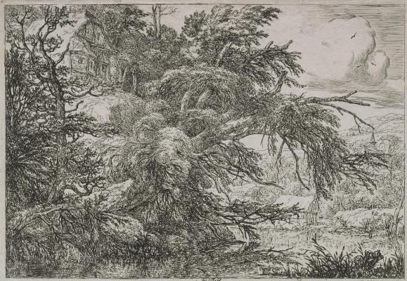 Jakob van Isaacs Ruisdael. Landscape with a house on a rock