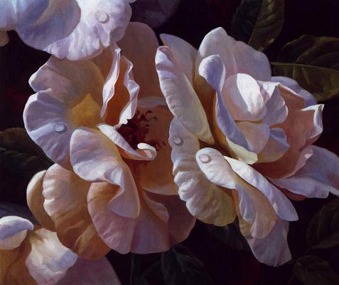 Майкл Джерри. Розы с росой