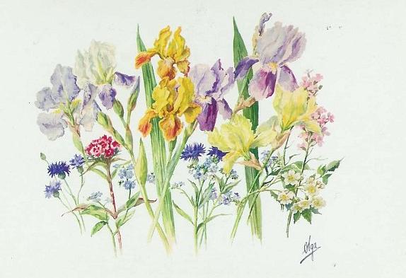 Olga Alexandrovna Romanova. Flowers