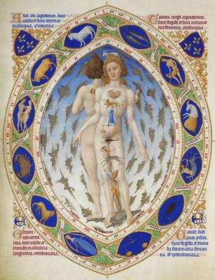 Братья Лимбург. Великолепный Часослов герцога Беррийского. Анатомия человека или Знаки зодиака