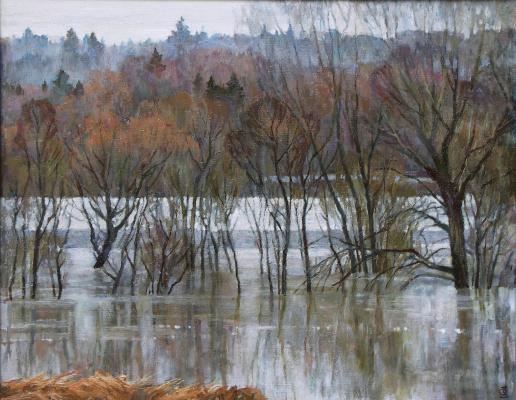 Oleg Borisovich Zakharov. Lace floods.