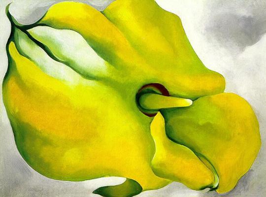 Georgia O'Keeffe. Yellow Canna