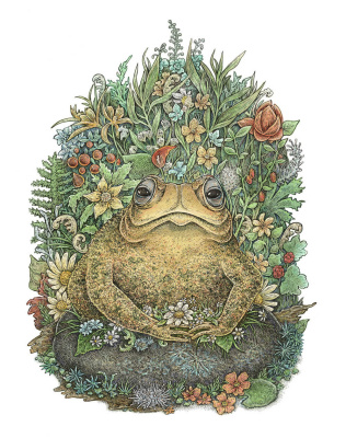 Eugene Batyrova-Gauss. Her Majesty the Toad