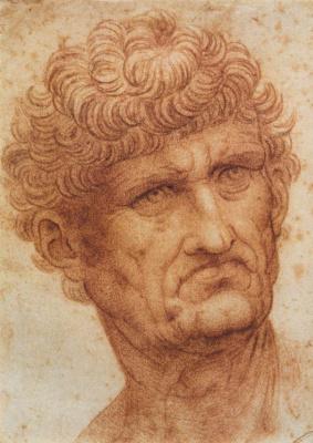 Leonardo da Vinci. Head of a man